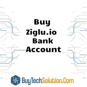 Buy Ziglu.io Account